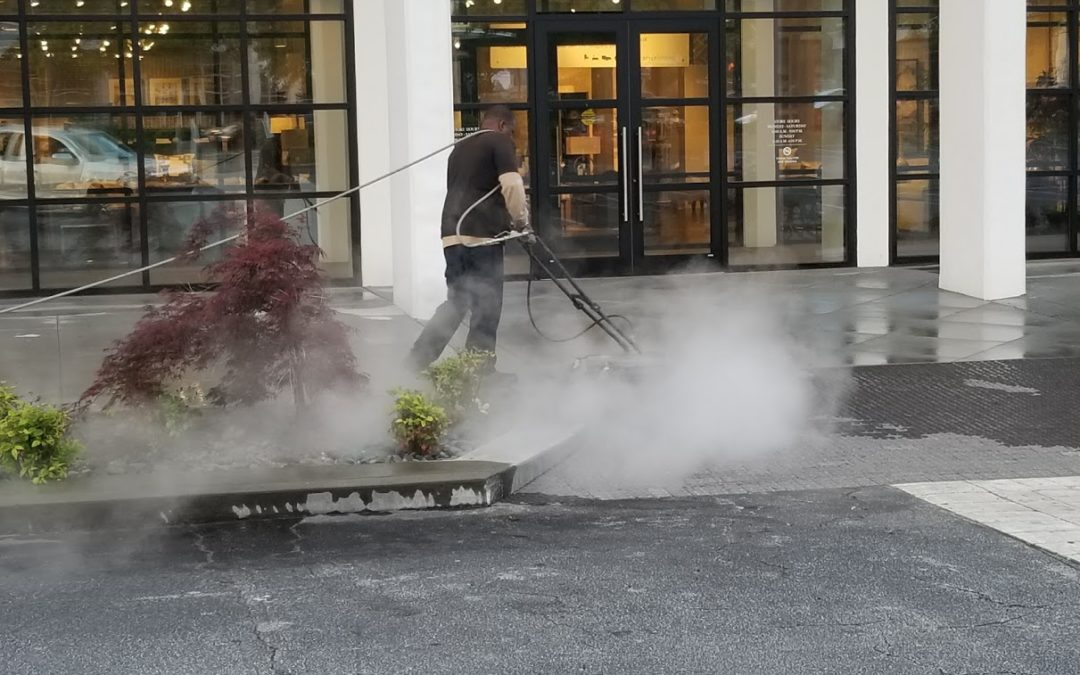 What You Need to Know About Pressure Washing